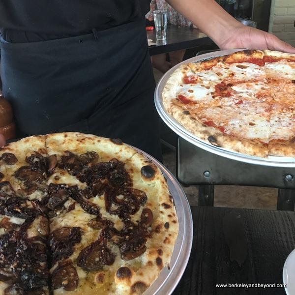 pizzas at Dough Pizzeria Napoletana at Hemisfair in San Antonio, Texas