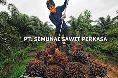 Lowongan Kerja PT. Semunai Sawit Perkasa Pekanbaru Mei 2019