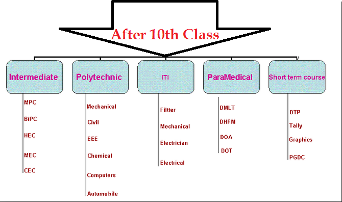 what is next After 10th Class-After 10th Career Tips