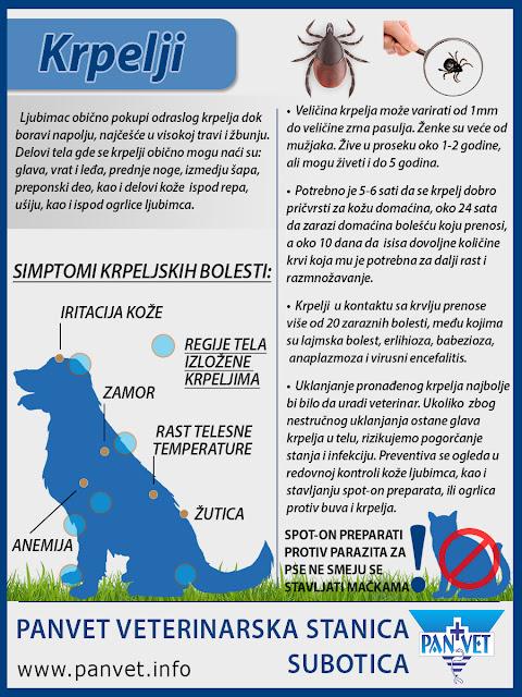 Krpeljske bolesti - Panvet infografika
