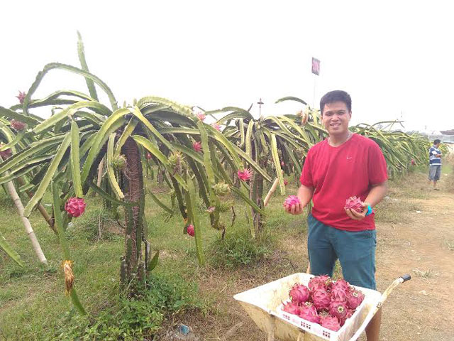 Perkebunan Rezeki Jaya Organik