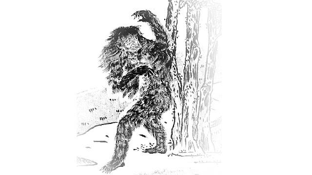 覚(さとり) ― 心を読む山の妖怪 ―|珍奇ノート