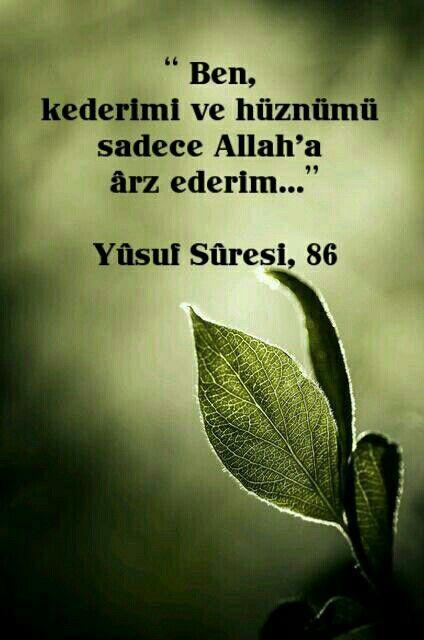 Yusuf 86