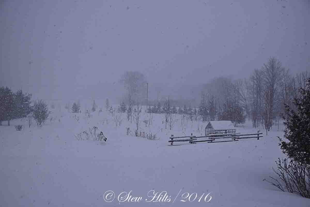 Seasons in the Valley + Furry Gnome\'s Adventures: Another Snow Day!