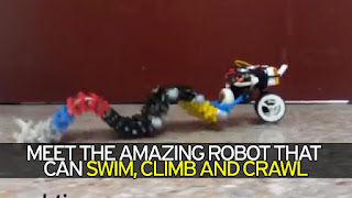 trending news, Wave like Robot which can swim and also used for medical purpose