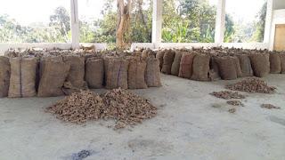 Sawhthing Hralna - Mizoram Agriculture Marketing Solution (MAMSol)