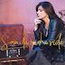 Capa do novo CD Som Da Minha Vida de Fernanda Brum