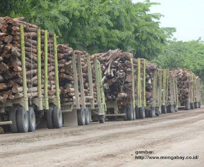 Dokumen izin pengangkutan kayu