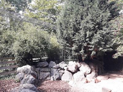 jardin-de-la-roseraie-coeur-du-zoo-de-maubeuge