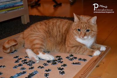Katze Mimi beim Puzzlen
