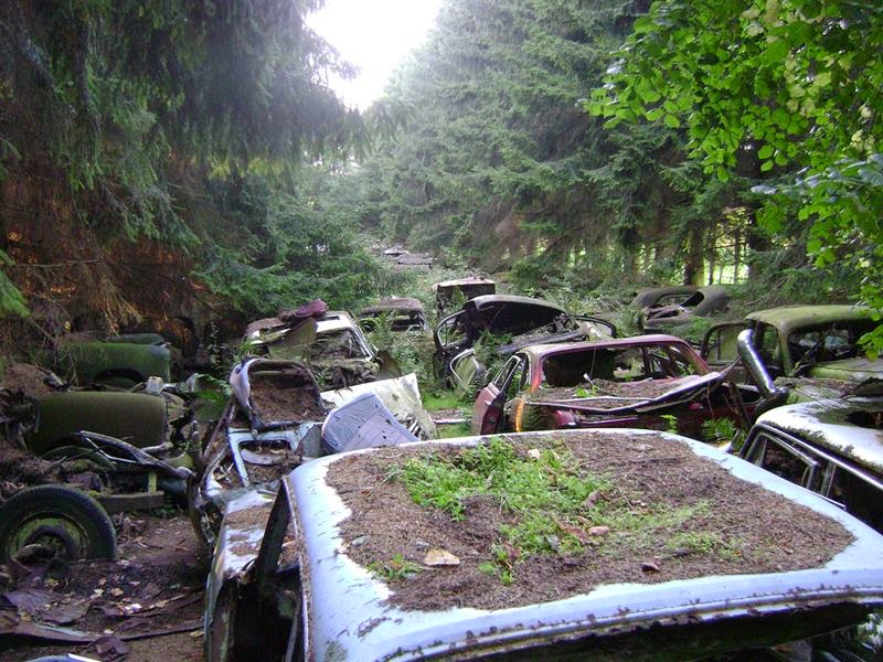 The Châtillon Car Graveyard, The middle of a small forest the collection of vintage cars in the woods near Chatillon, located in Wallonia, Belgium.