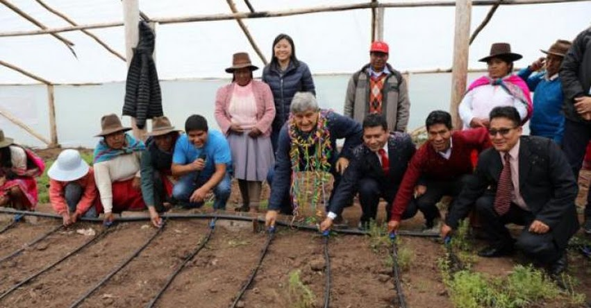 Proyecto en Occopata es finalista en certamen internacional de universidades «Green Gown Awards 2020»