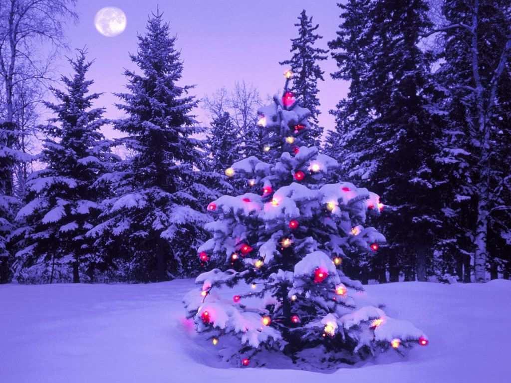 Imagenes De Navidad Para Fondo De Escritorio