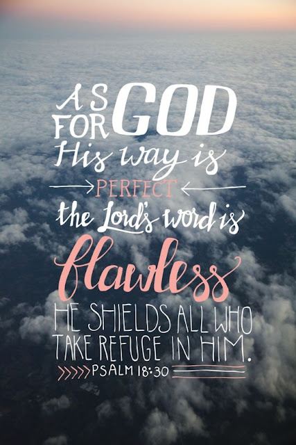 As for God, his way is perfect; the word of the Lord is flawless. He is a shield for all who take refuge in him.