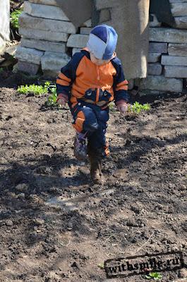 in the mud like a pig Peppa