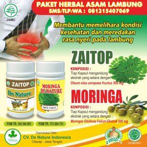 obat maag kronis de nature