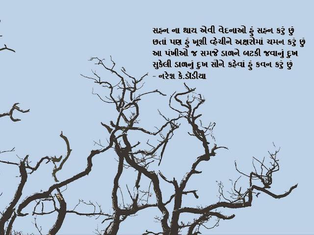 आ पंखीओ ज समजे डाळने बटकी जवानुं दुख Gujarati Muktak By Naresh K. Dodia
