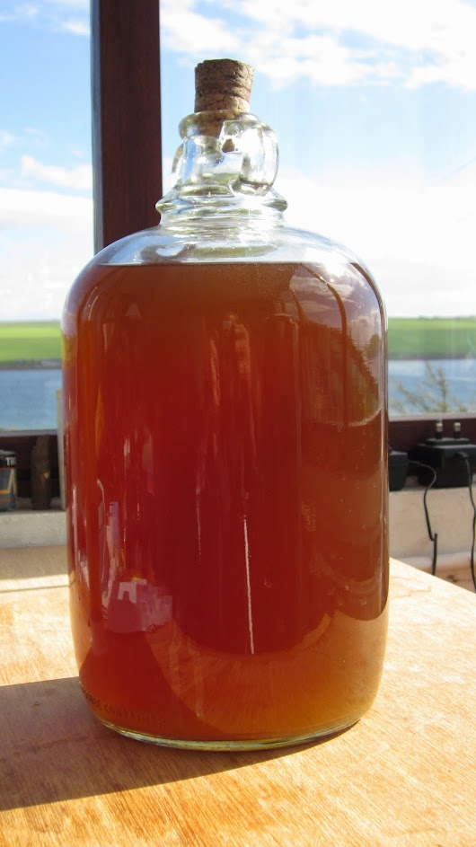 What is Wort - a brewer's perspective