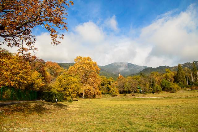 Золотая осень в Массандре фото