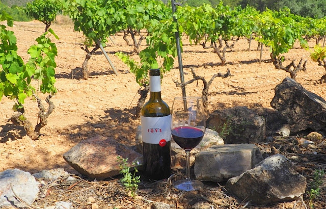 wine tourism catalonia, falset, do montsant, wijntoerisme in catalonië, wijntoerisme spanje, paella, roger felip soler, catalaanse gastronomie, catalaanse wijnen