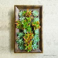 http://acraftymix.com/blog/2016/03/29/framing-vertical-garden/