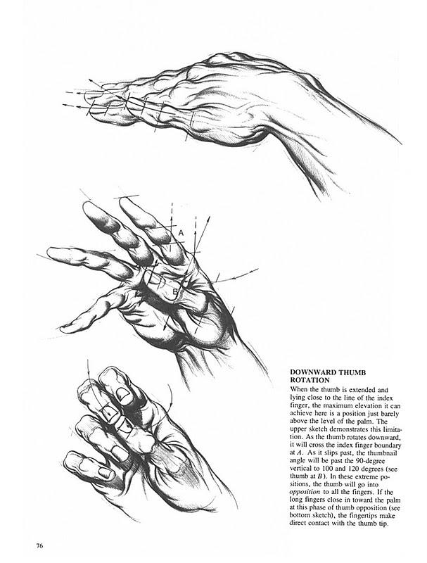 GHITESCU ANATOMIE ARTISTICA PDF