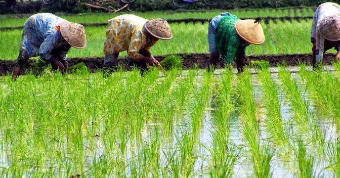 JENDELA ILMU IPS: Kegiatan Ekonomi dan Jenis-Jenisnya