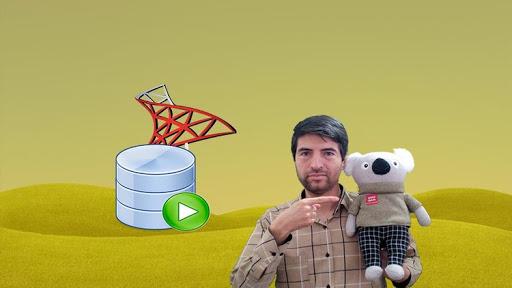 SQL Server for Beginners