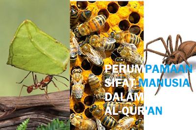 semut laba laba dan lebah