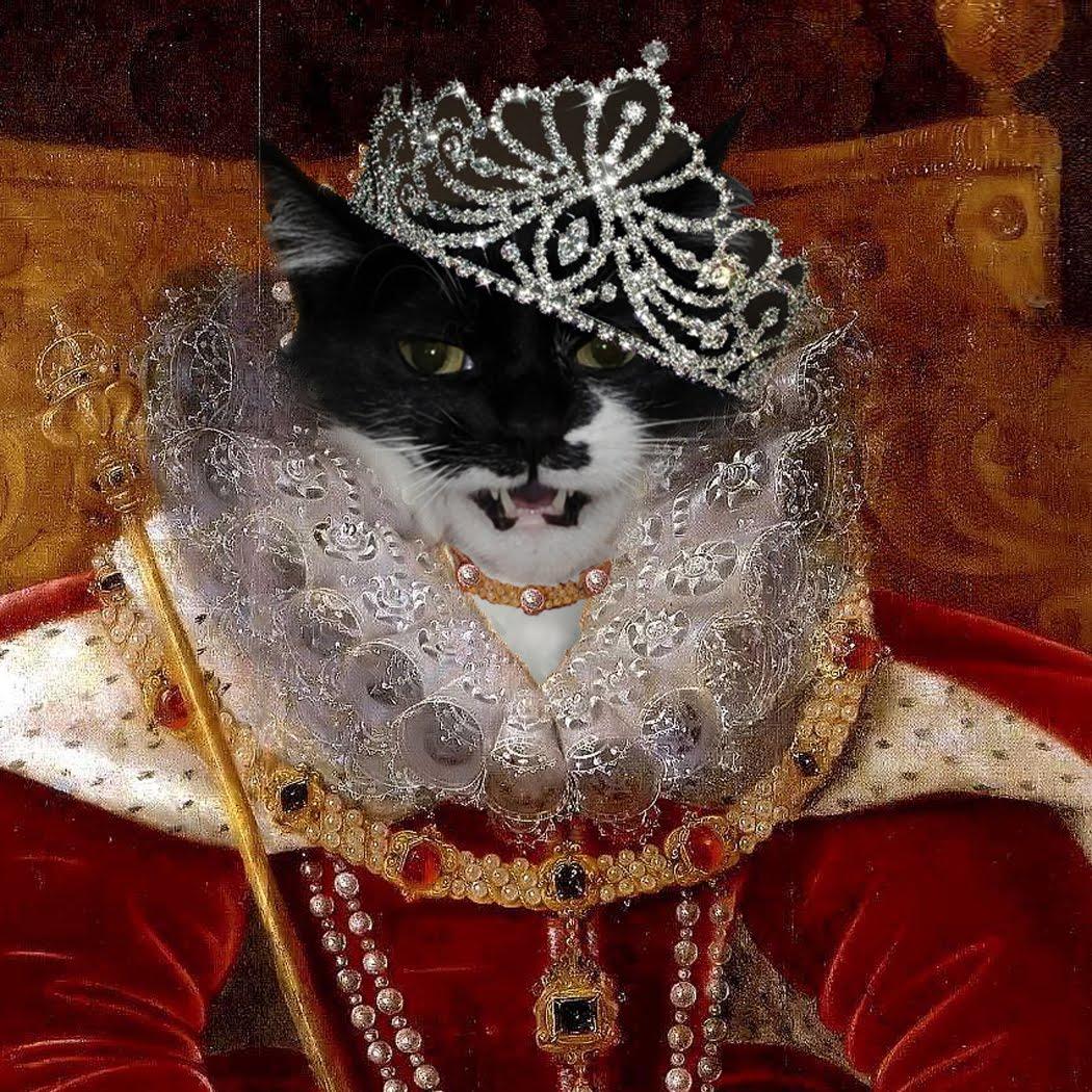красными королева кошка картинки поделюсь хитростью, которою
