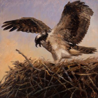Osprey on twig nest, oil painting, ©Shannon Reynolds