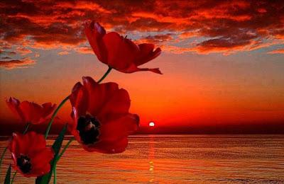 Keindahan Alam - Merawat Jiwa dan Minda