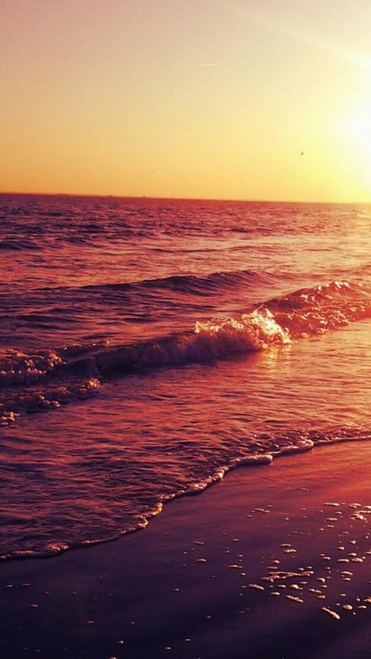 Ocean Sunset Golden Shore Waves  Galaxy Note HD Wallpaper