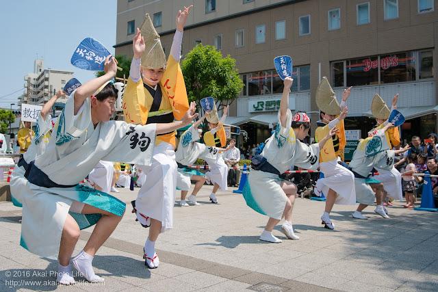 天狗連、熊本地震被災地救援募金チャリティ阿波踊りの舞台踊りの写真