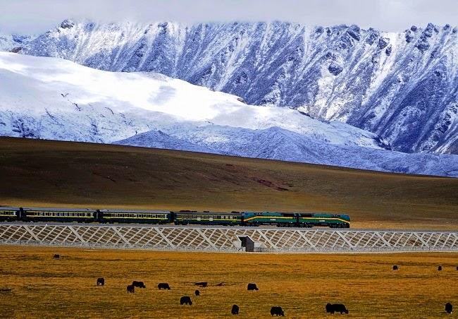 Global warming threatens the high-altitude Qinghai to Tibet railway line, stretches of which are built on permafrost. (Credit: Image: Jan Reurink via Wikimedia Commons) Click to Enlarge.