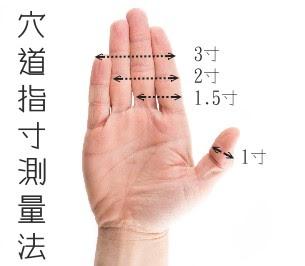 穴位測量 | 手指量測 - 穴道引導與穴道按摩