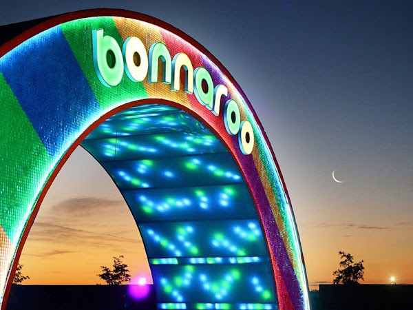 How To || Go To Bonnaroo