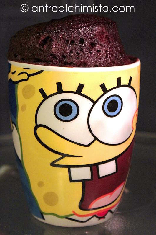 Coconut & Chocolate Mug Cake