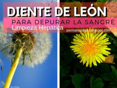 Limpieza hepática para depurar la sangre con diente de león, zumo de remolacha, zanahoria y limón