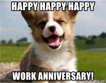 funny dog work anniversary meme