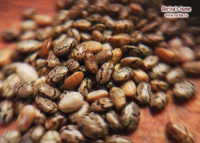 Семена чиа крупным планом