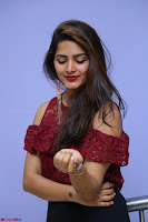 Pavani Gangireddy in Cute Black Skirt Maroon Top at 9 Movie Teaser Launch 5th May 2017  Exclusive 035.JPG