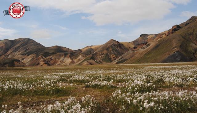 Montañas Suðurnámur