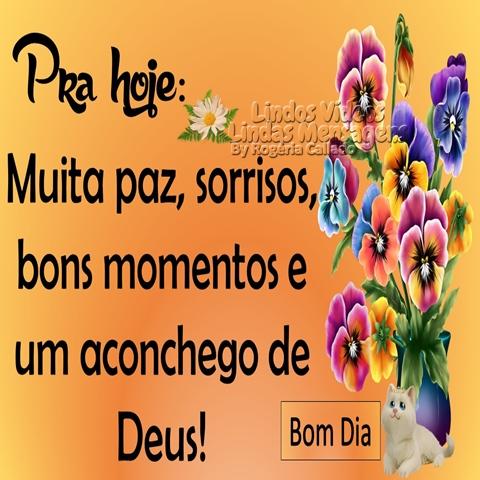 Pra hoje:  Muita paz, sorrisos,  bons momentos e  um aconchego de Deus!  Bom Dia!