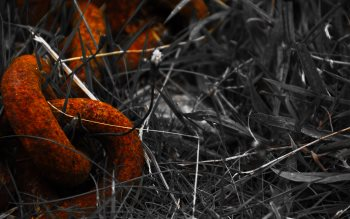Wallpaper: Grass Chain Rust