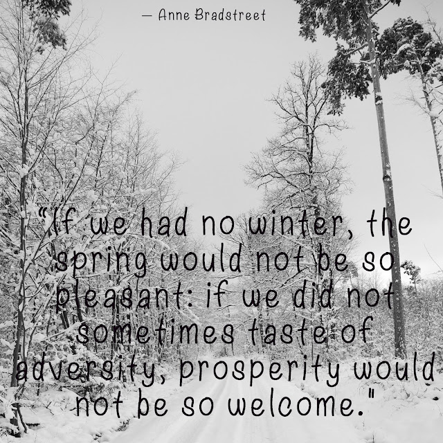 If we had no winter, the spring would not be so pleasant: if we did not sometimes taste of adversity, prosperity would not be so welcome. - Anne Bradstreet