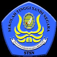 logo stsn 2017