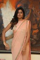 Eesha Rebba in beautiful peach saree at Darshakudu pre release ~  Exclusive Celebrities Galleries 062.JPG