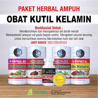 paket obat herbal manjur untuk penyakit kondiloma atau kutil kelamin