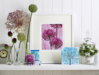 Allium designs by Jane Crick